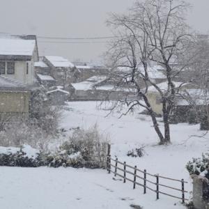 シーズン初?吹雪