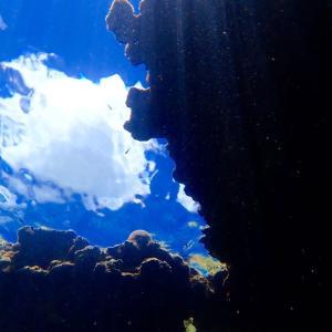 台風が接近している石垣島から