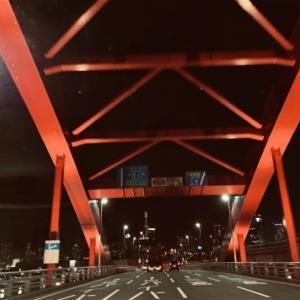 橋と夜景とルミナリエ
