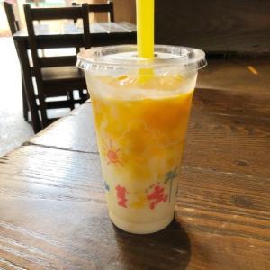 【TDS】夏のおすすめ「ラッシー(オレンジゼリー&マンゴー)」実食レポ