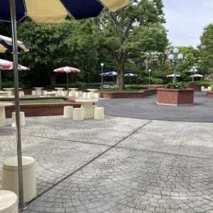 東京ディズニーランドのピクニックエリアって自由に使えるの?【2021年版】