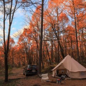紅葉キャンプ@長野県あさまの森オートキャンプ場より帰還しました!