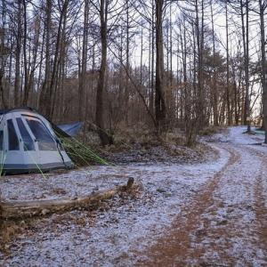 ひっそり森の中でクリスマスキャンプをしています!