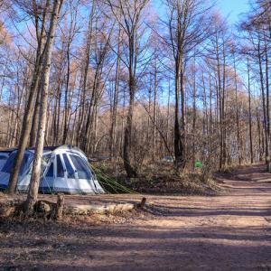 あさまの森でサイレント・クリスマスキャンプ&温泉三昧