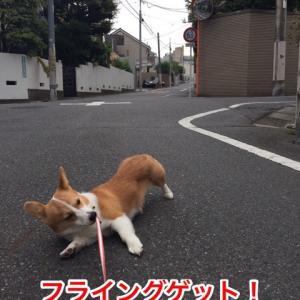 【異臭騒ぎ】スカシーヌ【テロ】 ワインNo.5