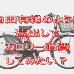 内田有紀のように電動アシストママチャリを使いこなそうと思った方必見!