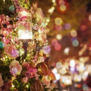 クリスマスが近づいてきてるのに、好きな人と寄りを戻せそうにないならやっぱり焦っちゃう?