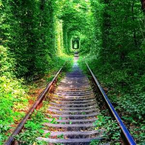 来てしまった、リヴネ!孤独。ひとりぼっちの愛のトンネル。加工しまくりよ。ほんとに蚊だらけだった。