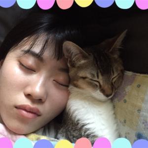 猫生活3週間