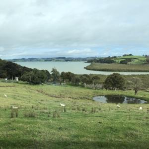 田舎暮らしを楽しもう:)