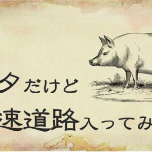 ピアノの「基礎的なテクニック」を、豚なりに考えてみたら