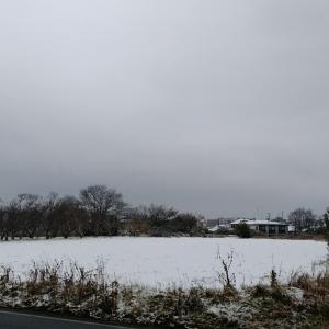 One Winter Morning / ある冬の朝
