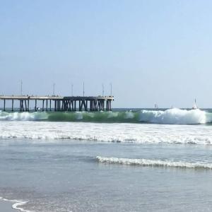 Venice Beach ヴェニスビーチ / ロサンゼルス
