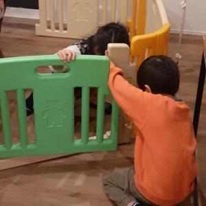 7ヶ月次女☆絵本大好き双子