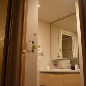 洗面所見直し。towerグッズで洗濯機横を整理。