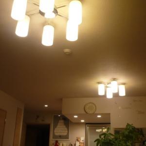 やっと手に入れた!今更ながらシーリングファンとダクトレール照明!!