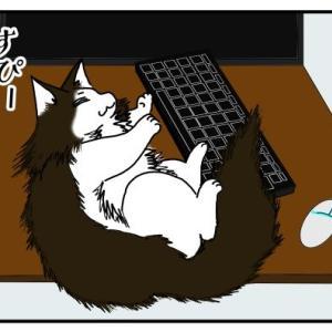 ゲーム中に寝落ちする飼い主と爆睡する猫