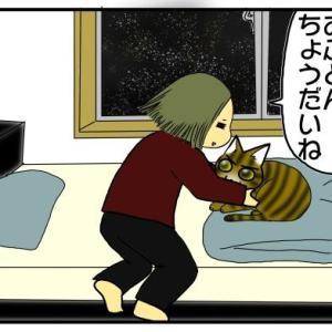 猫「ここがいい」