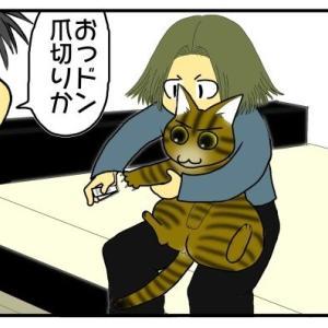 うちの猫に日本語が通じてる疑惑。「予防接種」という単語に反応して雲隠れ!