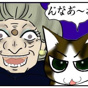 うちの猫変声期!12年目の声変わりをジブリキャラに例えるなら…