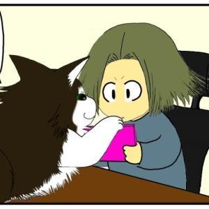 猫「見して」