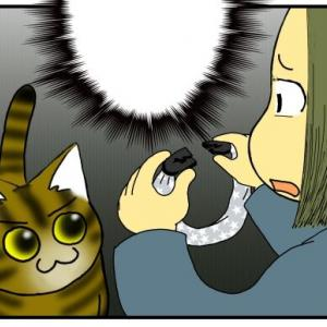 うちの猫、首輪嫌いを克服したと思ってたら…