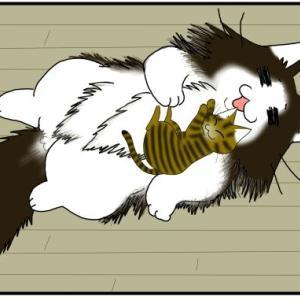 成猫の距離感【オス猫】【義兄弟】
