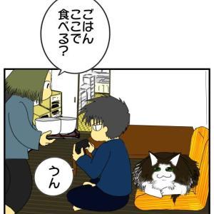 気配りの愛猫
