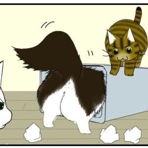 【猫との暮らし】無印で見つけたステキなゴミ箱