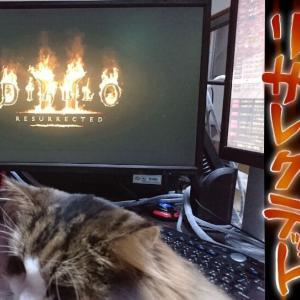 ディアブロ2リザレクテッド ニンテンドースイッチで買ってみた【Diablo II: Resurrected】