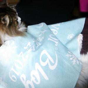 ライブドアブログ大忘年会2019記念品のタオルが猫様のお気に召したようです