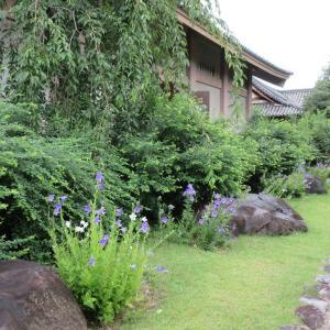 元興寺(奈良市) ①「ならまち」にある世界文化遺産「古都奈良の文化財」