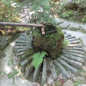 宝泉院(京都市左京区) ②平成に誕生した、仏の世界を表している庭園