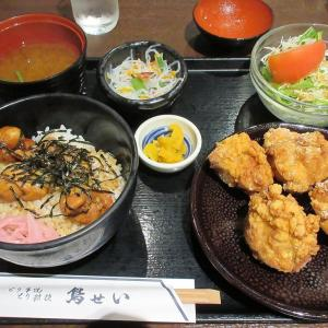 鳥せい(京都タワーサンド) 店内でもパブリックスペースでも食べられる焼鳥のお店