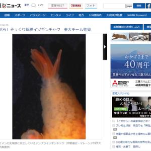 【新種】「天ぷら」そっくりのイソギンチャクが見つかり「テンプライソギンチャク」と命名されるwwwwww