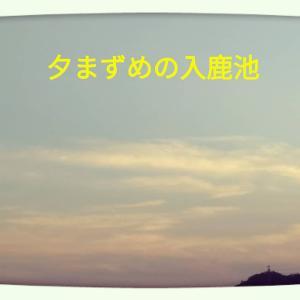 □□ 日中暑い暑い □□