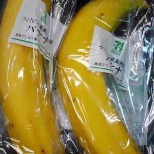 フィリピン産高地栽培 バナナ