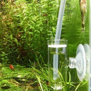 水草水槽のCO2添加に必要な器材・使い方・注意点|レギュレーター、ボンベ