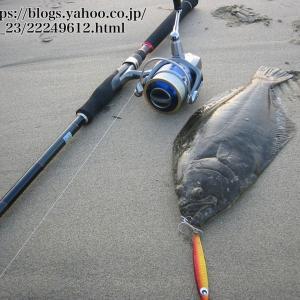 ヒラメのルアー釣りで使うロッド選び方・おすすめのロッド5選|長さ、パワー、マゴチ、フラット
