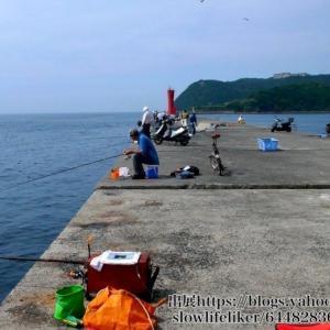 加太大波止の釣り場とポイント|青物やマダイ狙いにおすすめの堤防!、ハマチ、メジロ、カレイ、キス