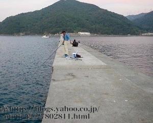 衣奈漁港の釣り場と釣れるポイント4選|チヌ、アジ、タチウオ、アオリイカ、由良町