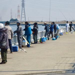 【海釣り入門】海釣りが楽しめる釣り場の種類と釣れる魚を紹介します
