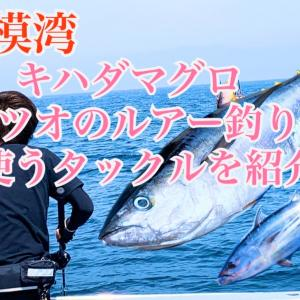 相模湾でキハダマグロ・カツオをルアーを釣るタックル・ルアーの選び方・釣り方|リール、ロッド