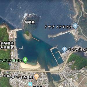 すさみ港の釣り場と初心者におすすめのポイント 釣れる魚、釣り方、青物、アオリイカ