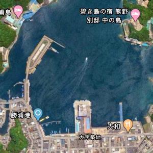 勝浦港の釣り場とポイント|釣れる魚、アジ、青物、アオリイカ、チヌ、那智勝浦町