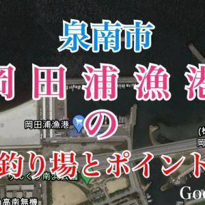 岡田浦漁港の釣り場とポイント 防波堤、テトラ、突堤で釣りが可能、泉南市