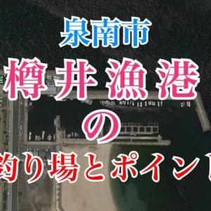樽井漁港の釣り場とポイント|海上釣り堀サザン有り、立ち入り禁止、泉南市