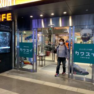 川崎水族館(カワスイ)に行ってきました!見所を紹介 Part1