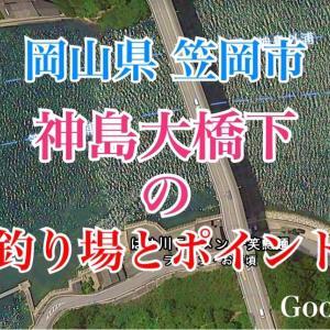 神島大橋下の釣り場とポイント チヌ、シーバス、イイダコが釣れるスポット、笠岡市