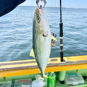 渡辺釣船店の青物ジギング&キャスティングに挑戦 必須ルアー有り イナダ タチウオ